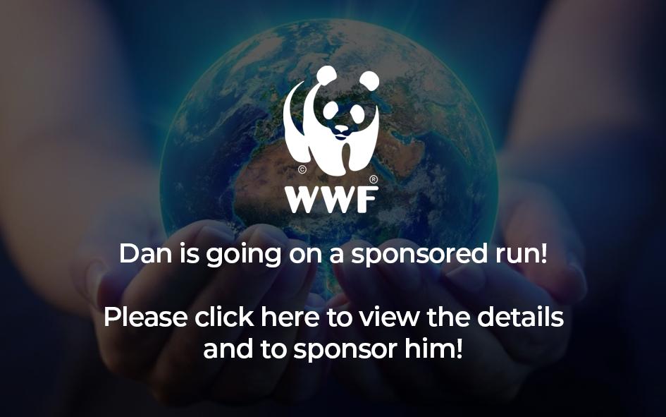 Sponsored run